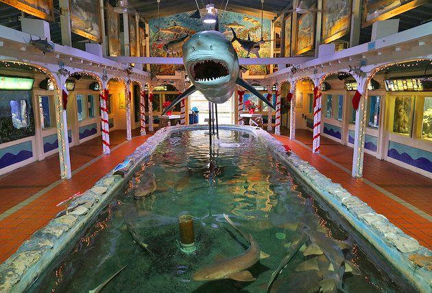 Key West Aquarium